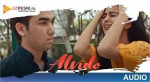 Ali - Alvido (2019)